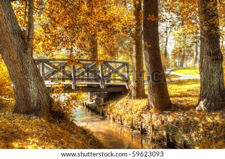 Autumn scenery. Beautiful gold fall in park. - stock photo