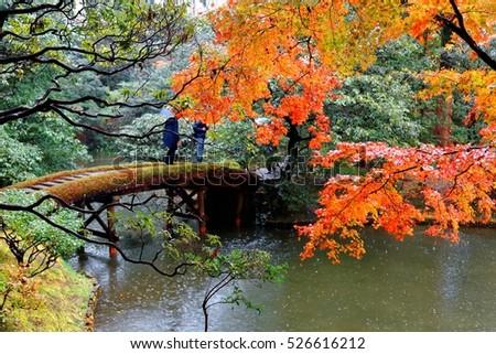 autumn scenery of a japanese garden in katsura imperial villa royal park in kyoto