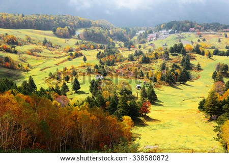 Autumn scenery of colorful forests in a valley in Shiga Kogen, Nagano Japan