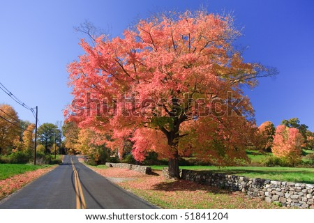 Autumn scenic view of an empty road in Connecticut, USA - stock photo