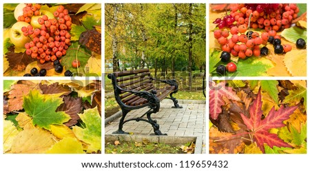 autumn set in the landscape and backgrounds