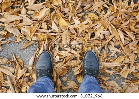 autumn shoes and leaves  - stock photo