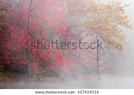 Autumn shoreline of Hall Lake in fog, Yankee Springs State Park, Michigan, USA - stock photo