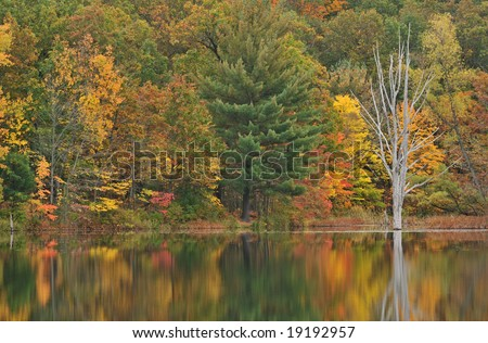 Autumn shoreline of Hall Lake, Yankee Springs State Park, Michigan, USA