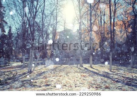 Autumn Snow Park USA - stock photo