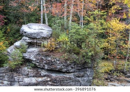 Autumn Splendor  - stock photo
