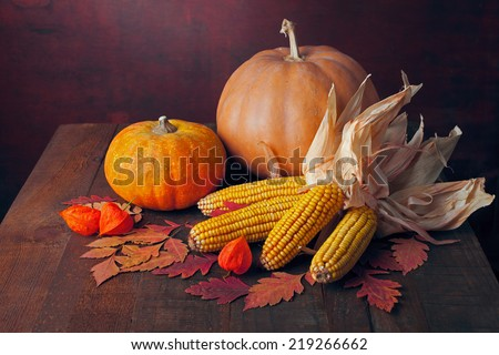 Autumn still life - pumpkins, corns and  physalis against the background of old wooden wall. Toned image - stock photo