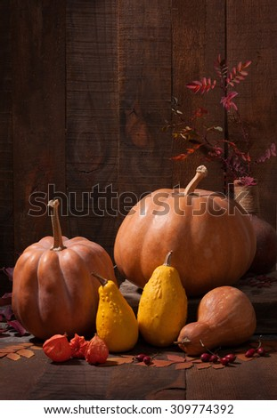 Autumn still life - pumpkins,   leaves and physalis against the background of old wooden wall.  - stock photo