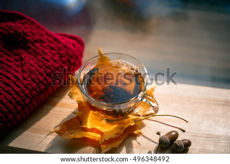 Autumn Still Life: Tea on maple leaves on a wooden table near the window. The sun's rays on a cup of brewed tea. Cup of hot tea on a sunny day on a window