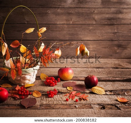 autumn still life with apples and berries - stock photo