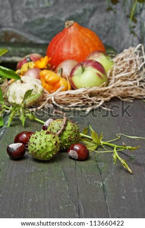 autumn still life with autumn flowers and pumpkins and chestnut - stock photo
