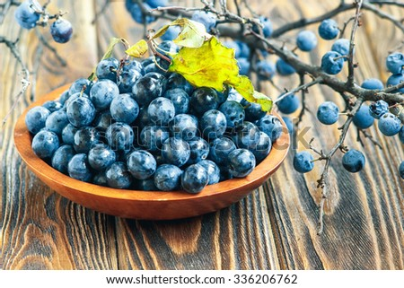 Autumn still life with blackthorn branches, leaves and fresh juicy ripe berries in a bowl on a wooden table. (Prunus spinosa or sloe) - stock photo
