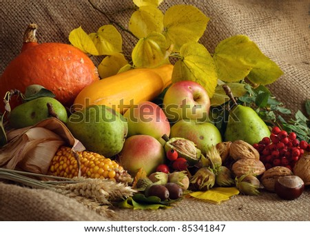 Autumn still-life with large group of products like apple, pear, pumpkin, corn, wheat, hazelnut, chestnut and more - stock photo