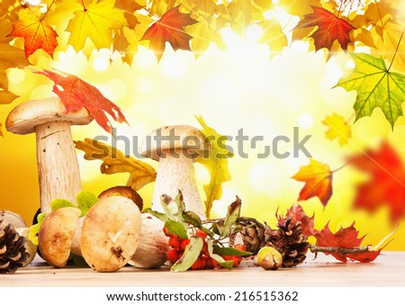 Autumn still life with mushrooms and leaves