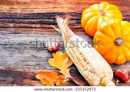 Autumn still-life with pumpkins and corn on wooden background - stock photo