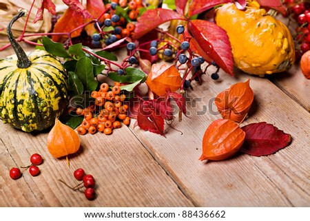 autumn stilllife installation on  the backyard table