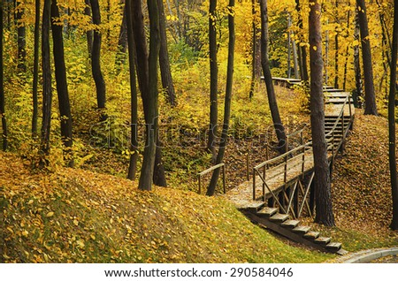 Autumn sunny park with yellow trees and woodeb stairs, natural seasonal background - stock photo