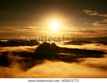 Autumn sunrise forest in a beautiful mountain within inversion. Treetops increased from foggy background. Vivid effect.
