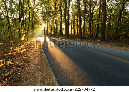 Autumn sunrise road - stock photo