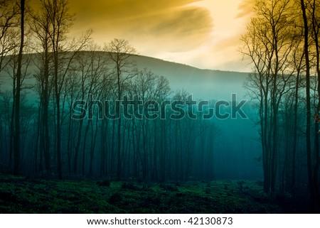 Autumn Sunset - stock photo