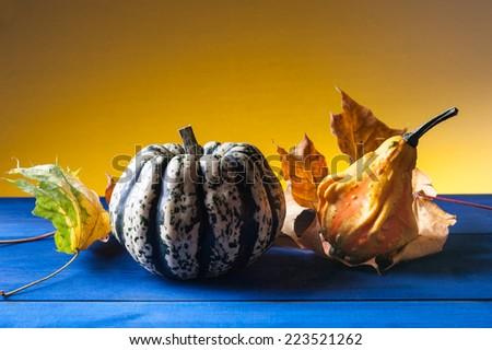 autumn symbols - leaves and pumpkin - stock photo
