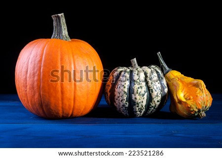 autumn symbols - pumpkin - stock photo