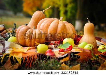 Autumn thanksgiving still life with checkered plaid, pumpkins, apples and berries  - stock photo