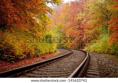 autumn track - stock photo