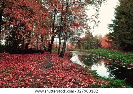 Autumn trees and red fallen leaves carpet in cloudy weather - autumn beautiful landscape, vintage colors