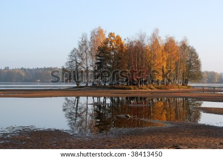 Autumn trees on the small pond.