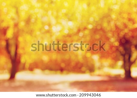 autumn trees out of focus, natural bokeh background  - stock photo