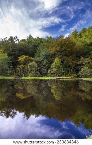 Autumn Trees Reflection in a calm lake - stock photo