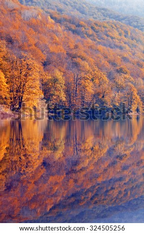 Autumn trees with reflection - stock photo