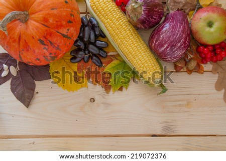 Autumn vegetables on wood background