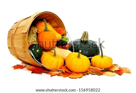 Autumn vegetables spilling from a harvest pail on a white background - stock photo