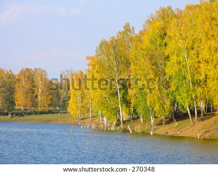 Autumn view of lake and forest