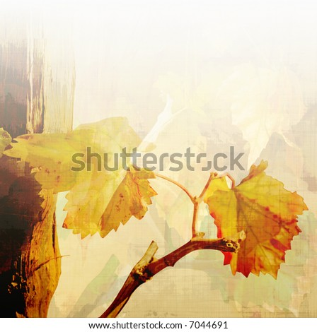 autumn vine leaves background - stock photo