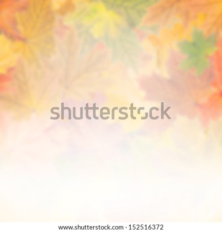 Autumn wallpaper with bright leaves for design, foliage background - stock photo