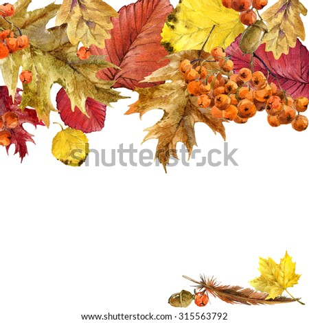 Autumn watercolor background with colorful leaves, fruit, berries, mushrooms, yellow leaves, rose hips. watercolor illustration