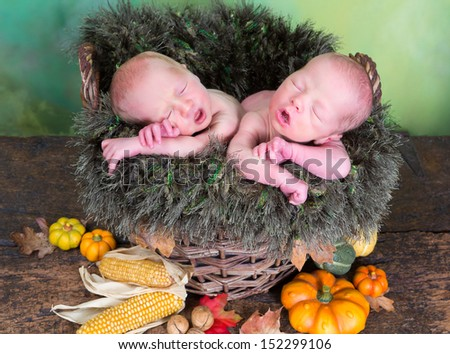 Autumn wicker basket with newborn twins with their mouths open like little birds - stock photo