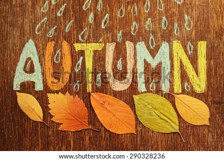 autumn word, autumn leaves and rain - stock photo