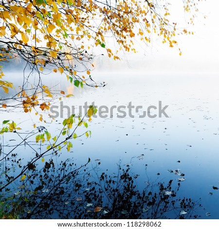 Autumn yellow leaves with reflection on still lake water in cold foggy morning - stock photo
