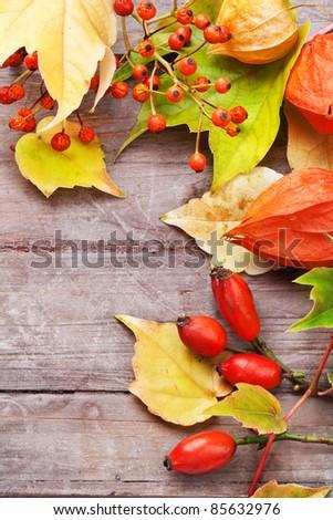 Autumnal border on wooden table, still life. - stock photo
