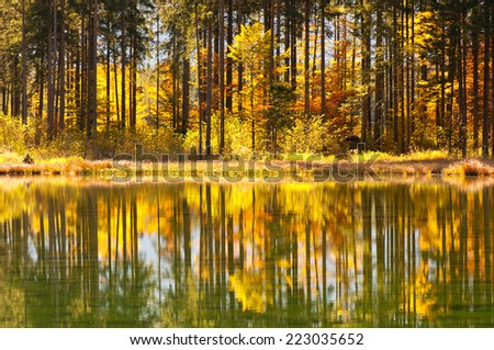 autumnal forest mirroring in the lake - stock photo