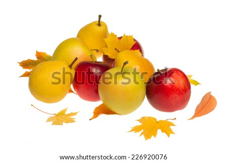 Autumnal harvest fruits with yellow leaves isolated on white background. Colorful pears and red apples, isolated on white - stock photo