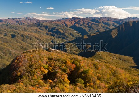 Autumnal landscape in a sunny day