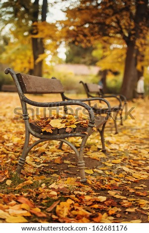 Autumnal park with bench. Focus on bench - stock photo