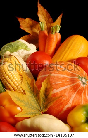 Autumnal vegetables, isolated on black background