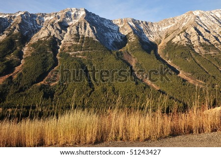 Autumnal view of rocky mountain slopes with fir and larch forests, kananaskis country, alberta, canada