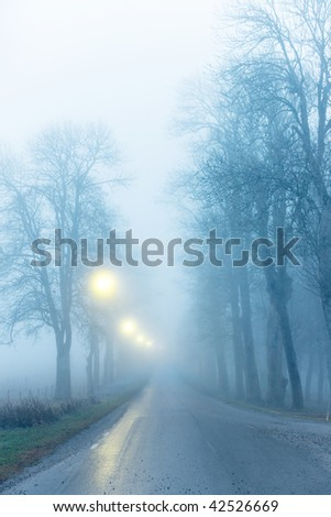 Avenue with bare trees in thick fog - stock photo